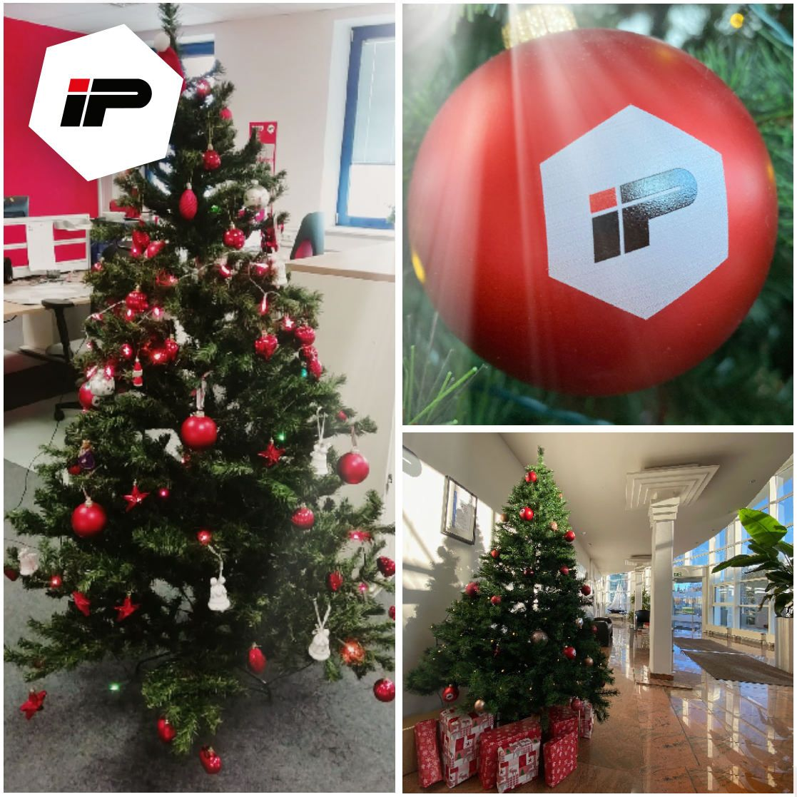 IP wünscht eine erholsame Weihna...